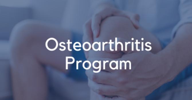Osteoarthritis Program